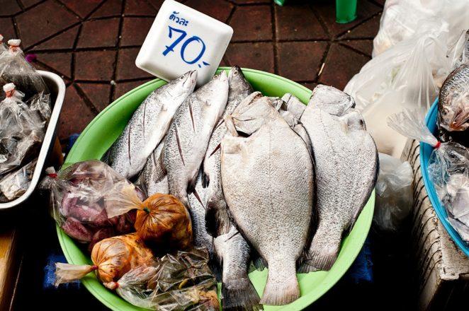witamina b12 ryby