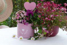 wyciągi z kwiatów pomogą na zmiany skórne