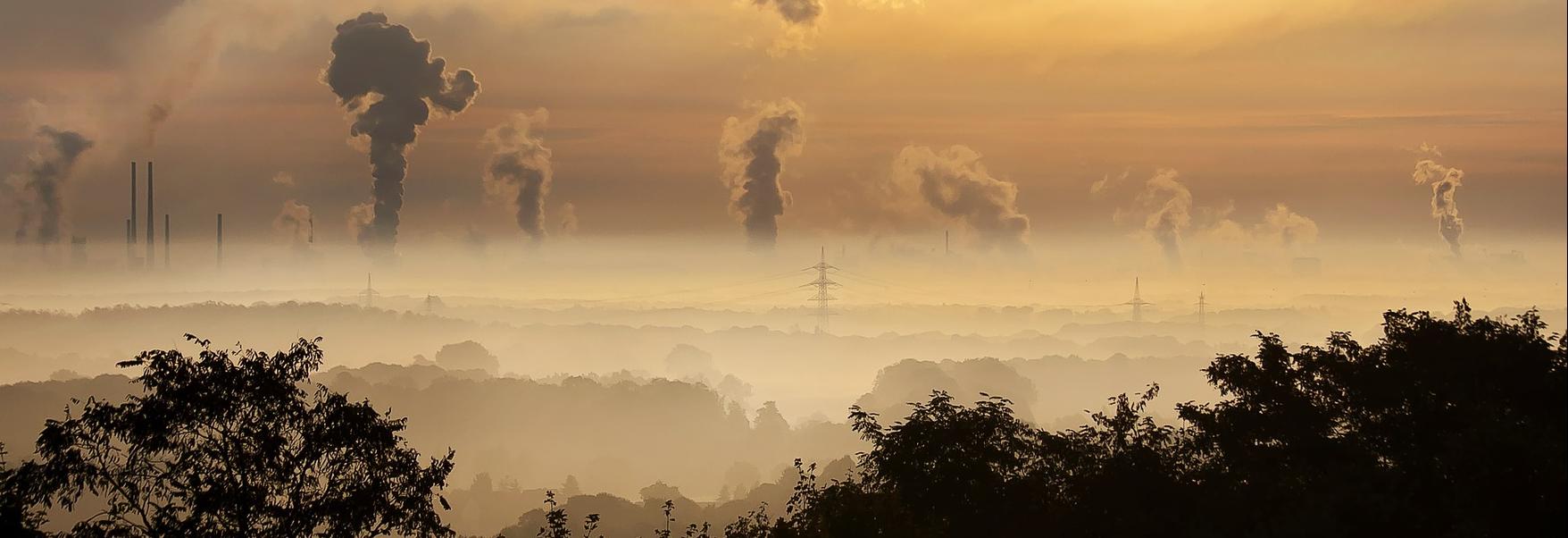 jak radzić sobie ze smogiem